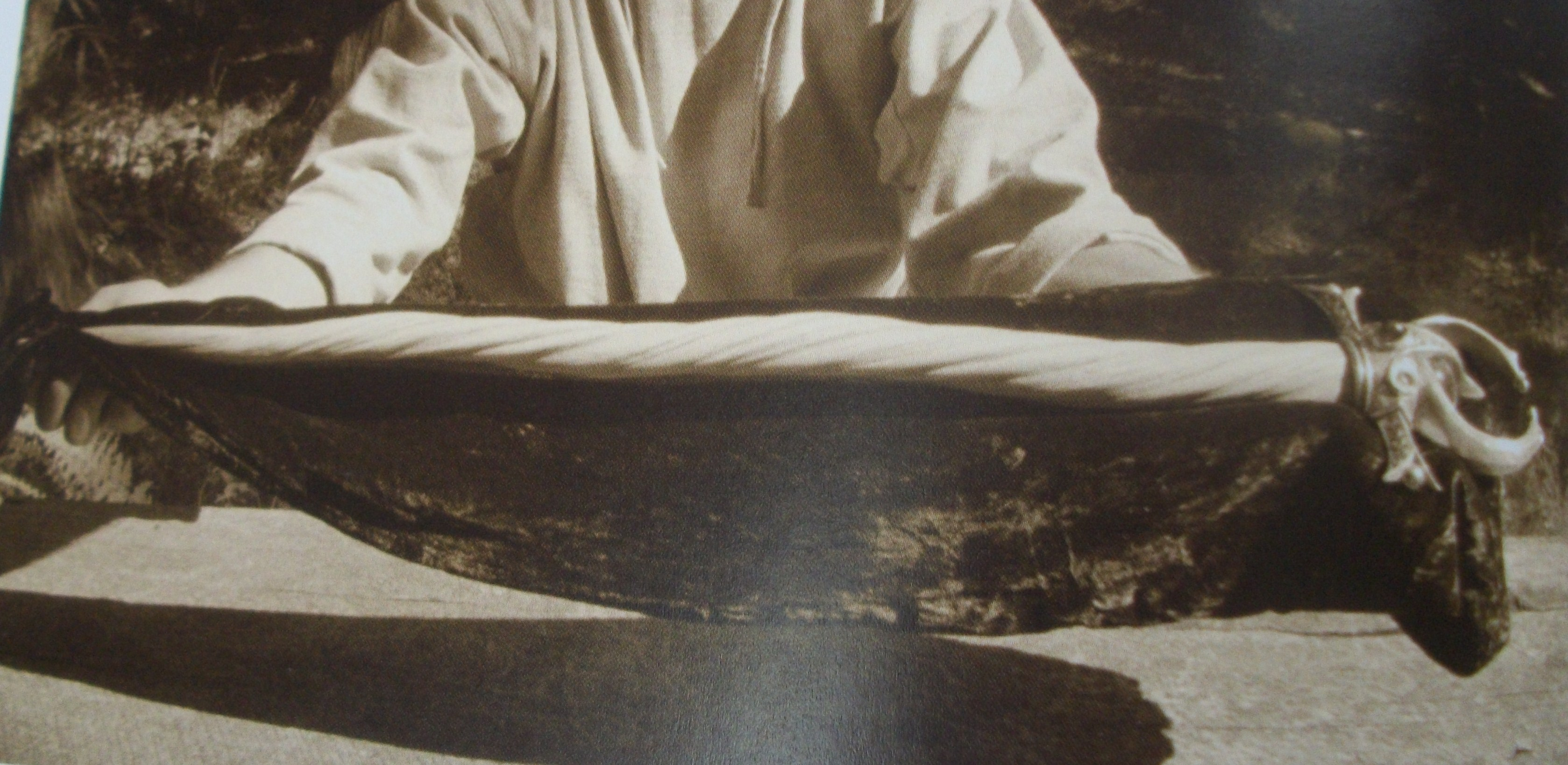 The Unicornis Manuscripts Silver Horn