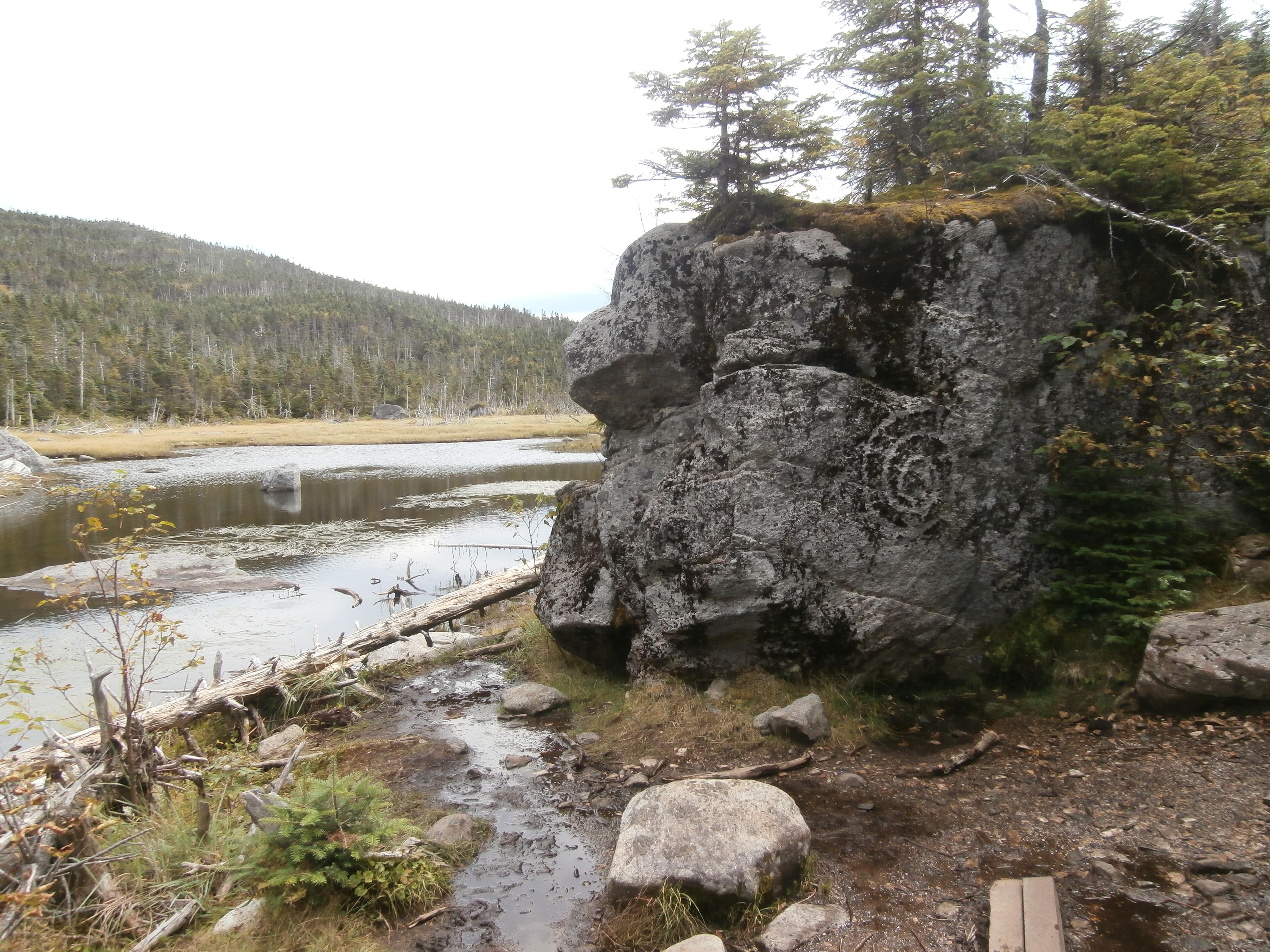 Unicornis Spiral Rock