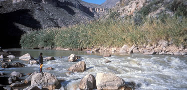 Rio_Grande_-_Wild_and_Scenic_River[1]