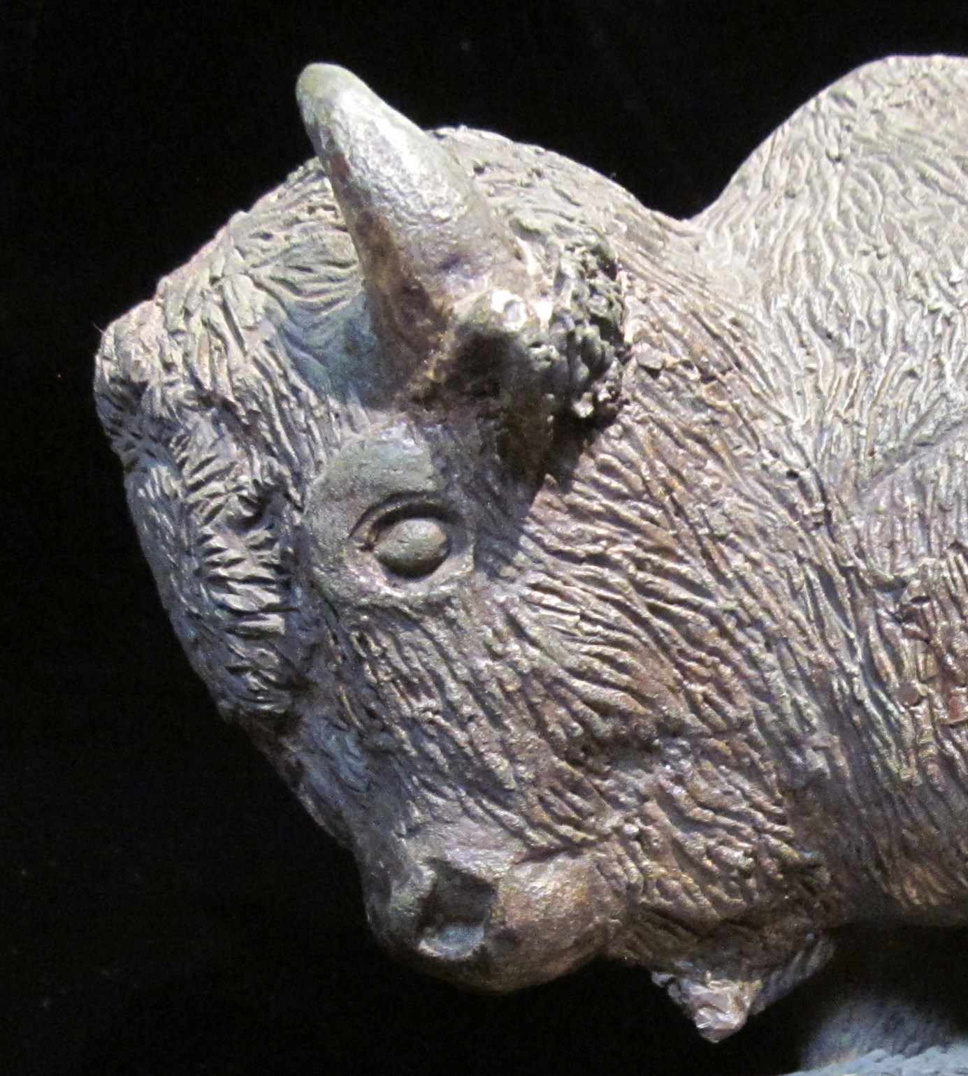 Forrest Fenn's Bronze Buffalo – Mysterious Writings