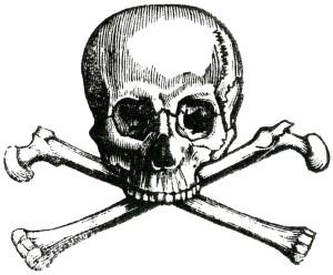 image 9 cross bones