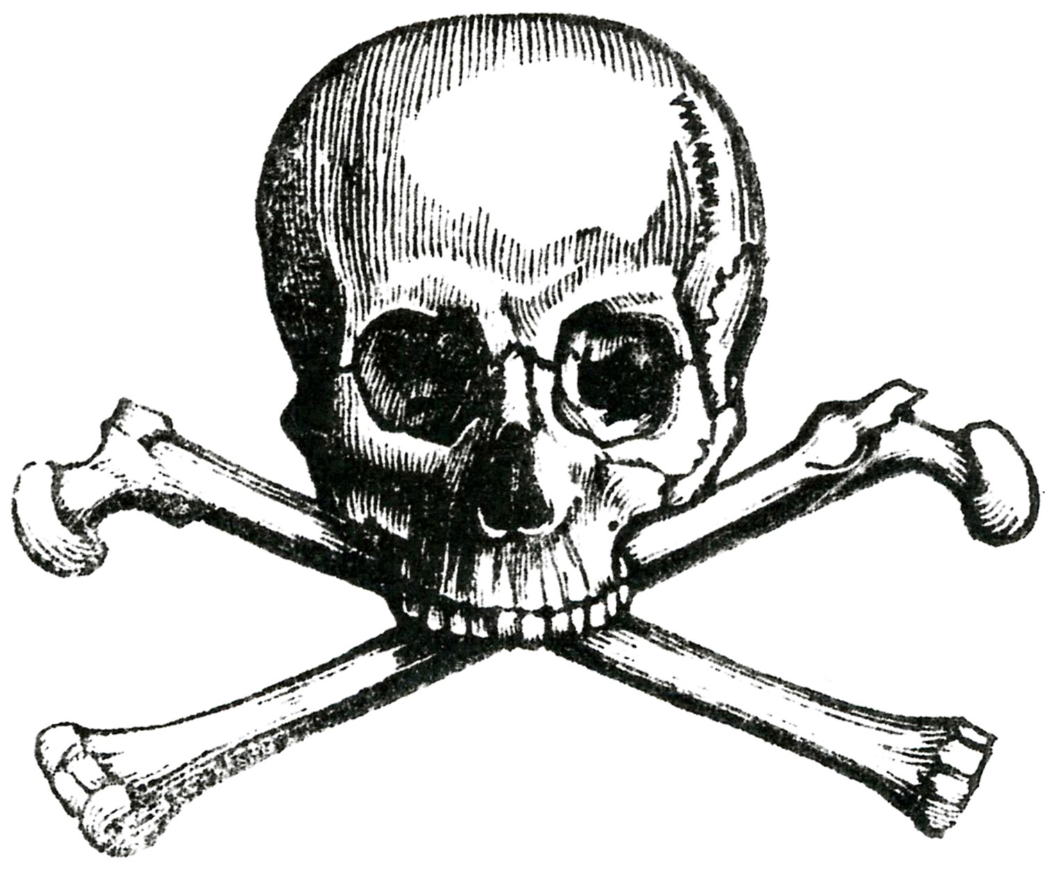 Skull Crossbones