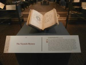 voynich manuscript at the folger in case