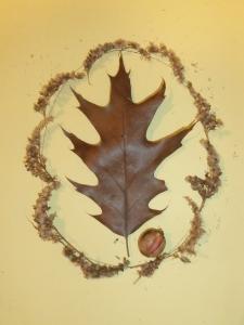 Mighty Oak by Fox
