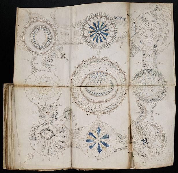616px-Voynich_Manuscript_(158)
