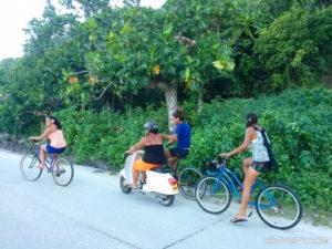 island life - happiness
